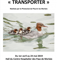 Affiche expo transporter